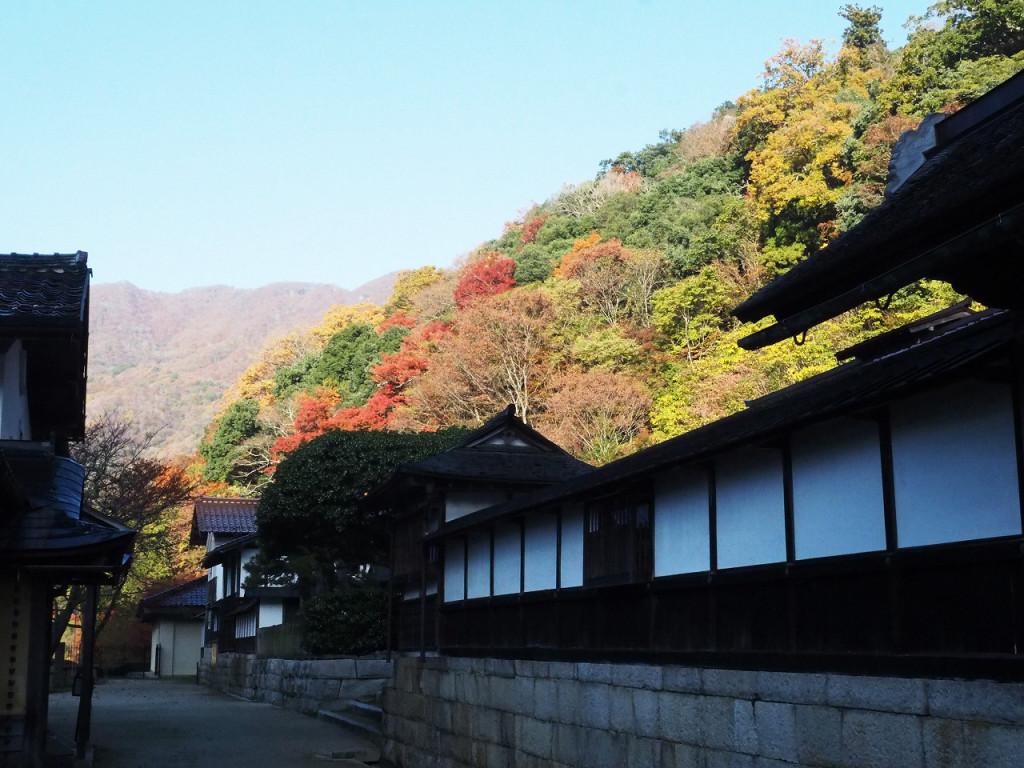 櫻井家住宅から鯛の巣山方面